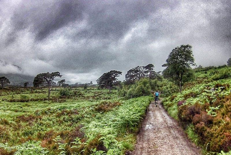 Ein einsamer, verlassener Weg führt zum Loch Affric.