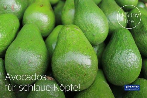 avocados-fuer-schlaue-koepfe