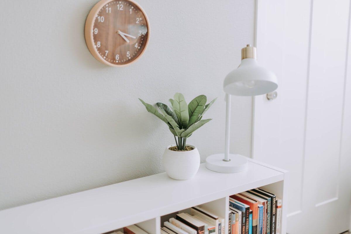 Ein Regal mit Büchern, einer Pflanze und einer Lampe