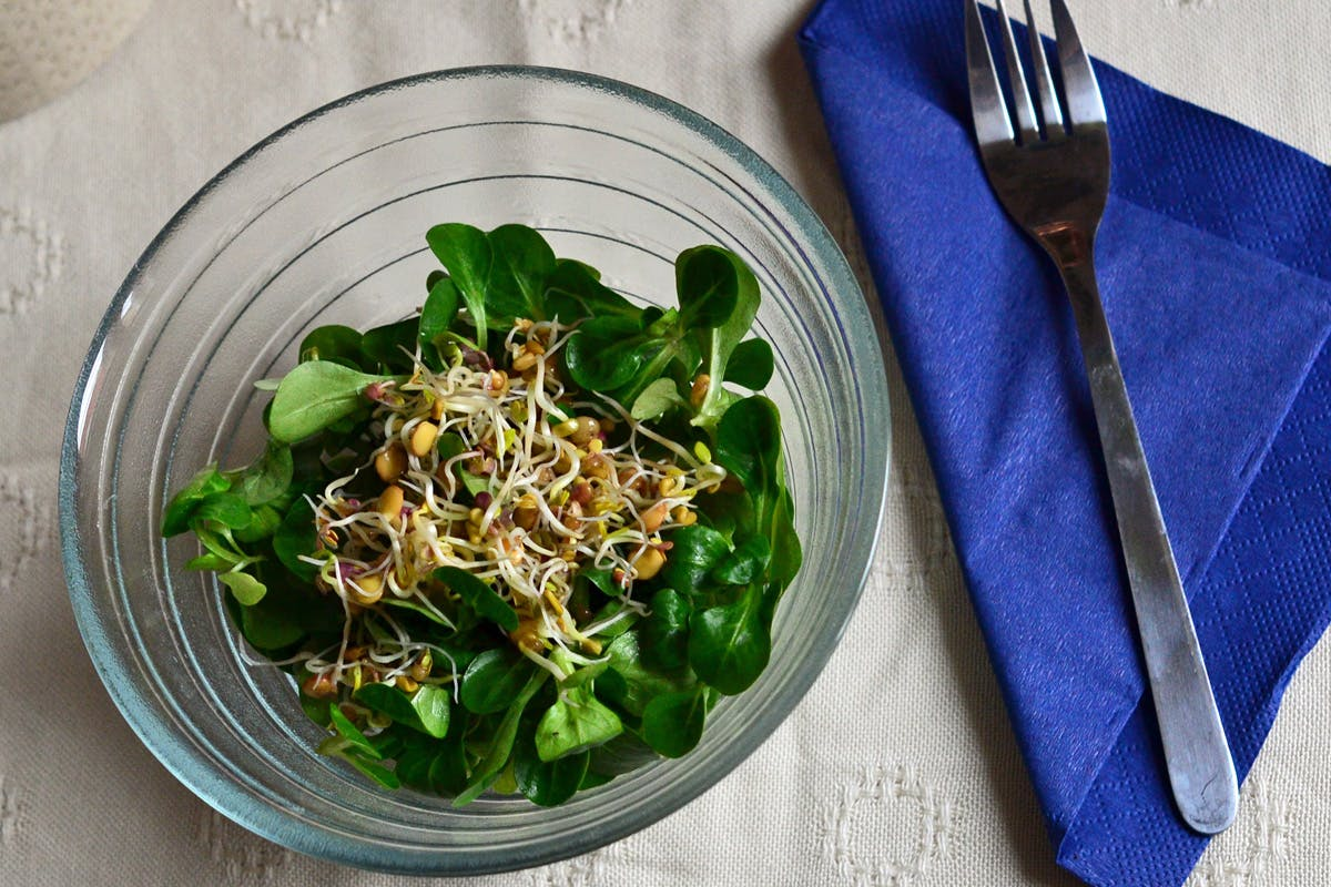 Sprossen über einem frischen Salat