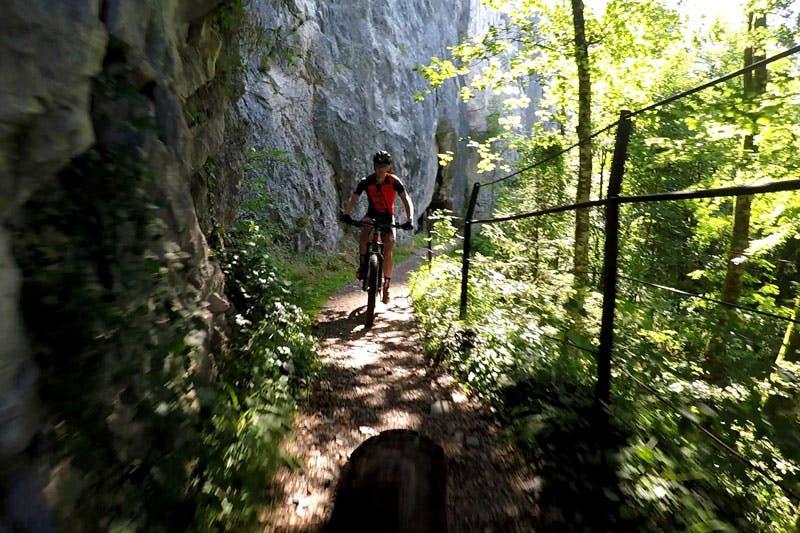 Mit dem Mountainbike über Stock und Stein