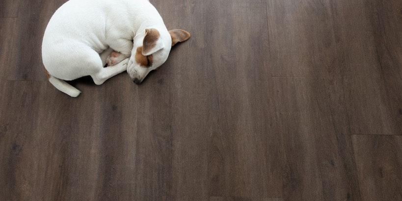 De voordelen van een PVC Vloer: