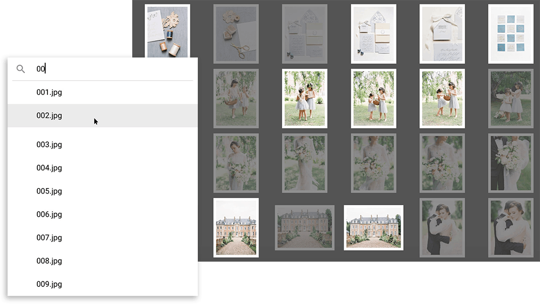 Image Search is a new feature in SmartAlbums 2020 helping photographers improve their workflow