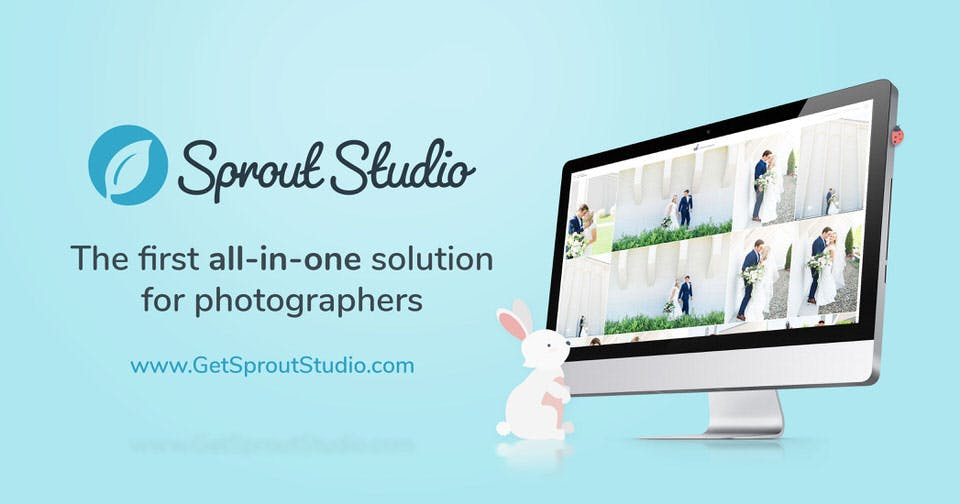 Sprout Studio Black Friday deal for photographers