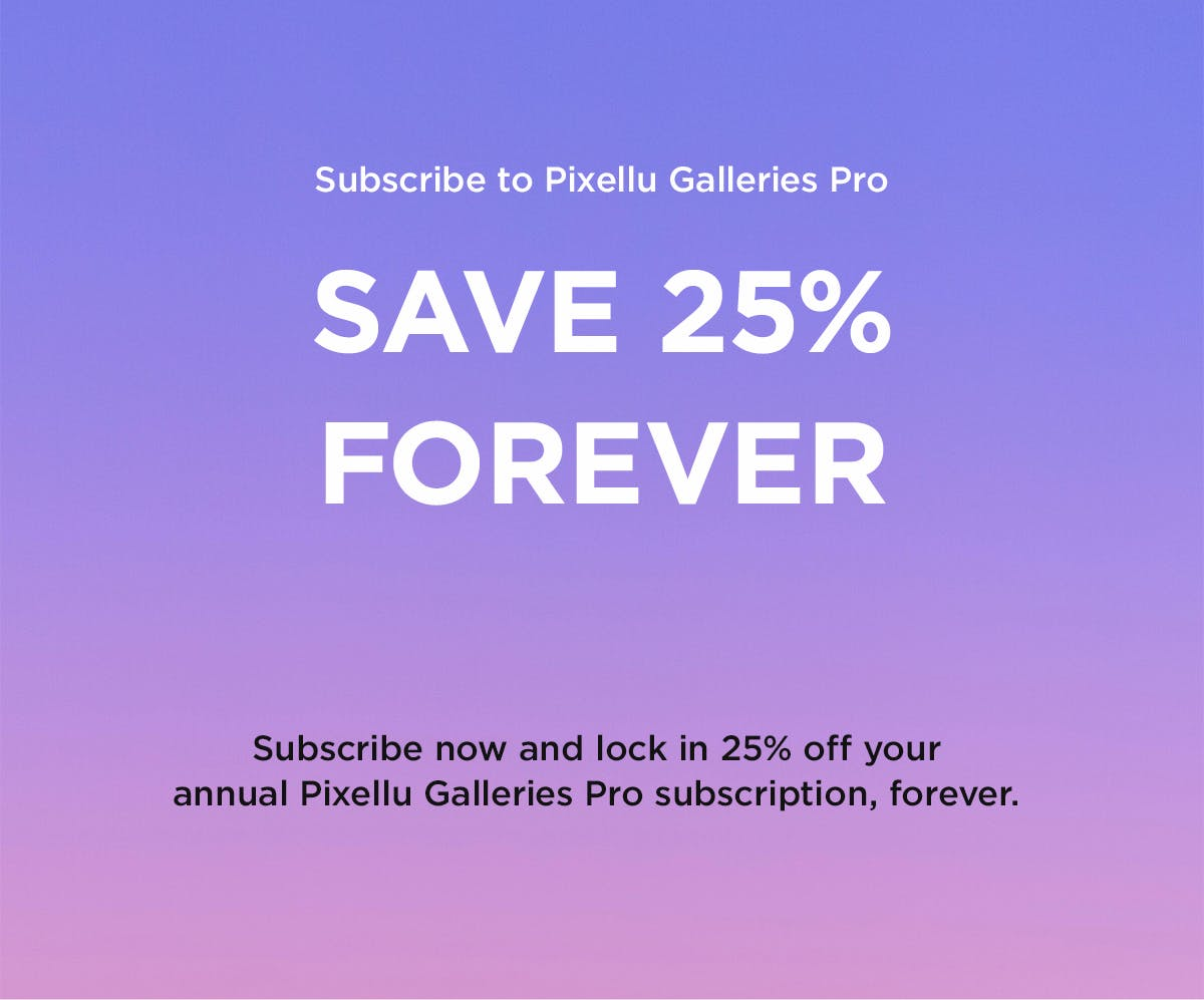 Black Friday deals for photographers Pixellu Galleries Discount
