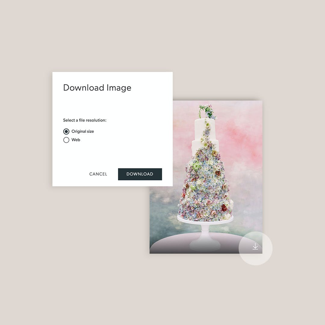 Pixellu Galleries allows clients to download images on hover