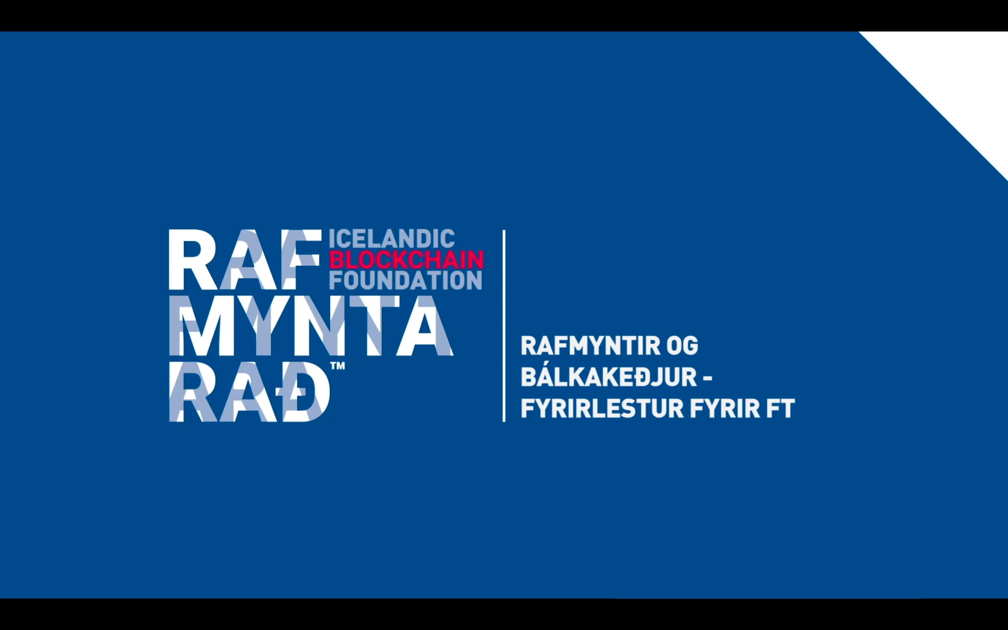 Rafmyntir og Bálkakeðjur - Fyrirlestur fyrir FT