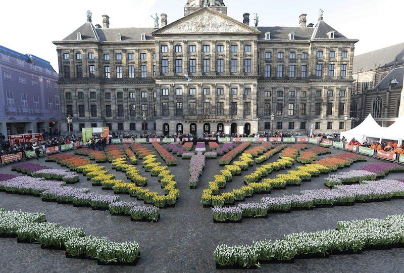 Haal vandaag nog het lentegevoel in huis en bestel direct een bosje tulpen online en laat ze bezorgen via Regiobloemist. Pluk jouw bosje lentegevoel in de tulpenpluktuin op de Dam in Amsterdam banner.