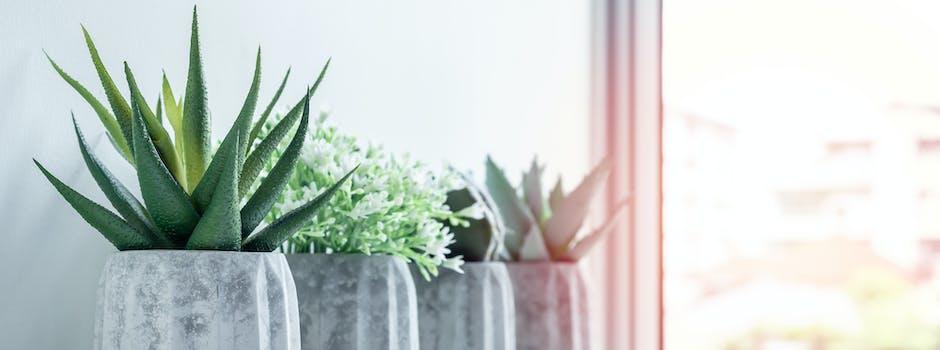 Bloemen en planten trend interieur