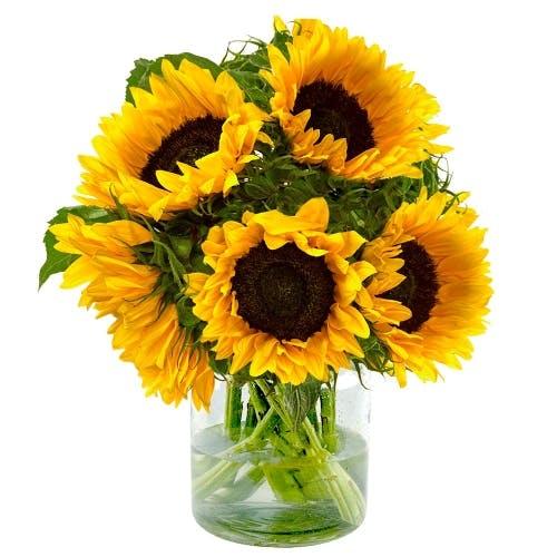 Zonnebloemen boeket in vaas