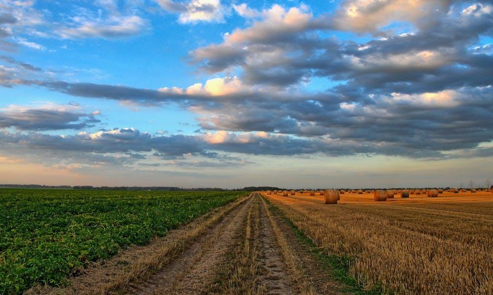 estimer le prix d'un terrain agricole