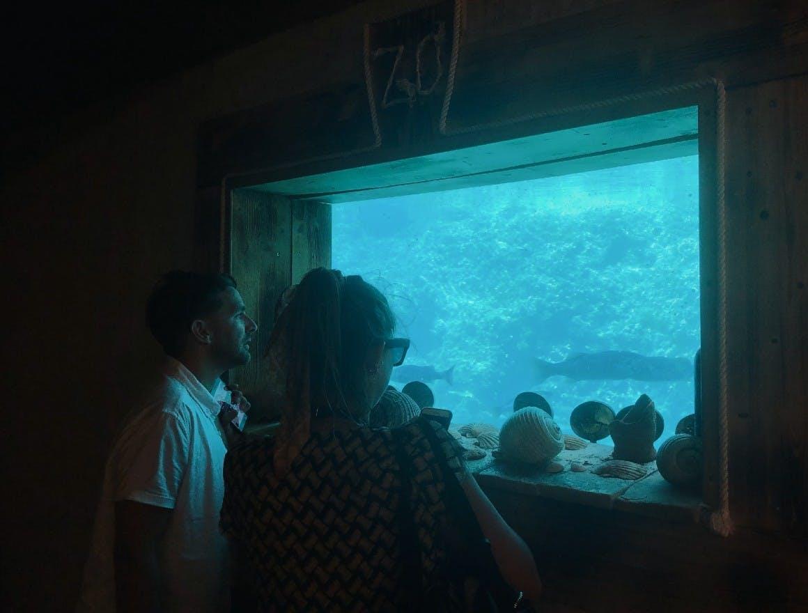 The seaside aquarium viewed from the underwater wine cellar at Zlatan Otok winery in Croatia
