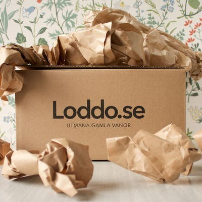 Loddo.se increased their conversion rate through referral marketing