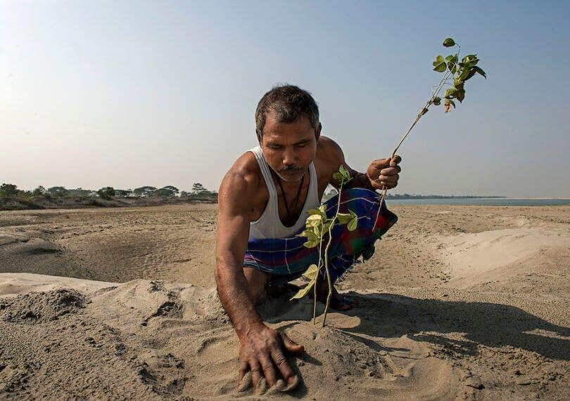 Jadav plantando uno de sus arboles