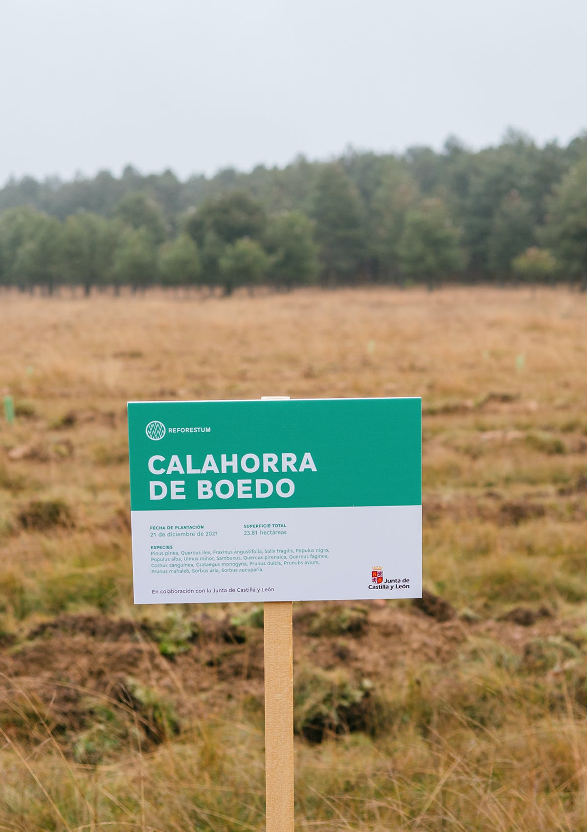 Sign in Calahorra de Bodeo with forest in the background