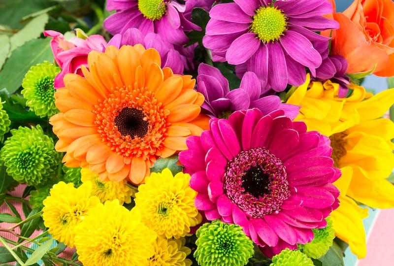 Blumen als geschenk für jemanden, der ein geheimnis sicher bewahrt hat und blumen verschicken mit Regionsflorist banner.