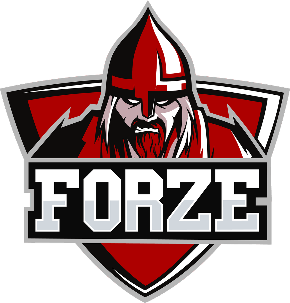 forZe Counter Strike Global Offensive
