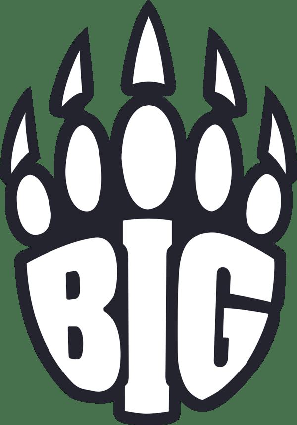 BIG Clan Counter Strike