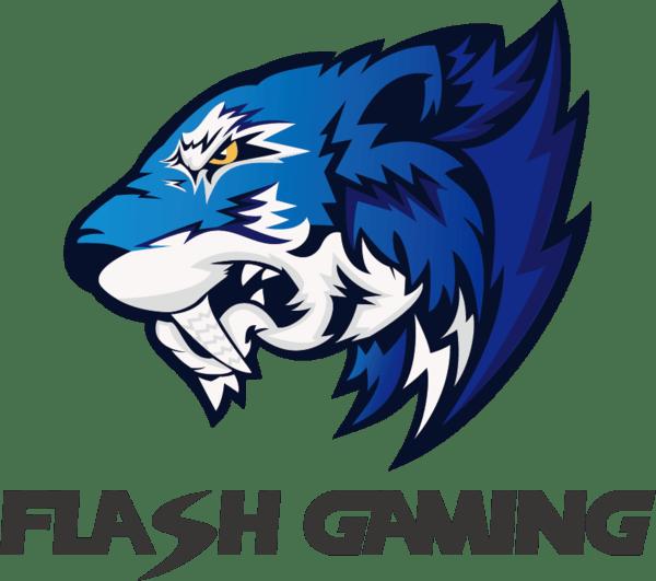 Flash Gaming CSGO