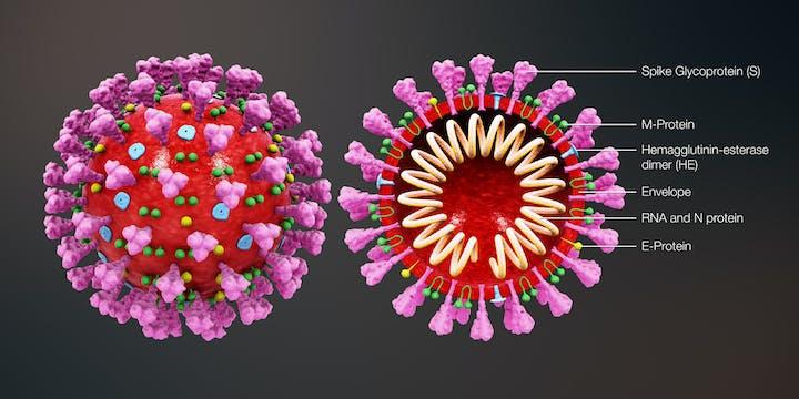 Esports and coronavirus