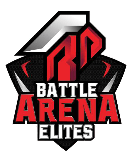 Image result for battle arena Elites logo