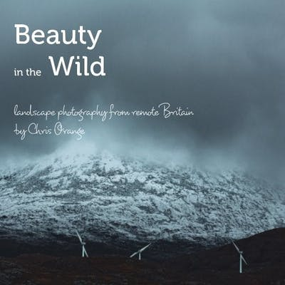 Beauty In The Wild by Chris Orange