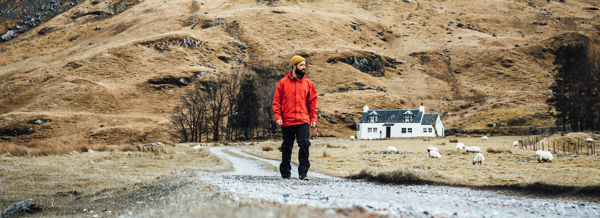 Road tripping the NC500