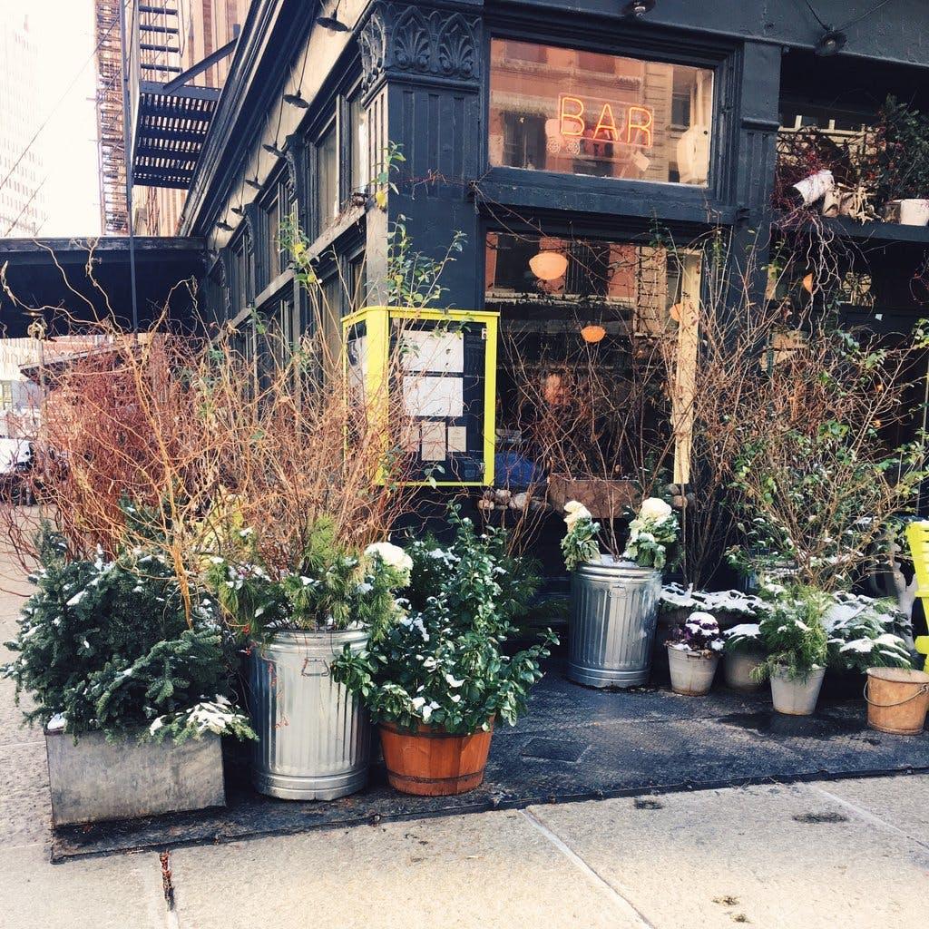 Plant-filled storefront of a Tribeca café.