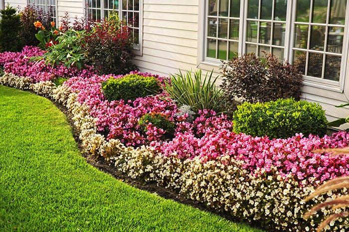 Comment avoir un beau jardin ?
