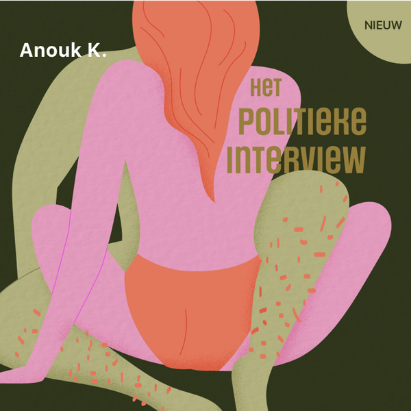 Cover art for: Het politieke interview