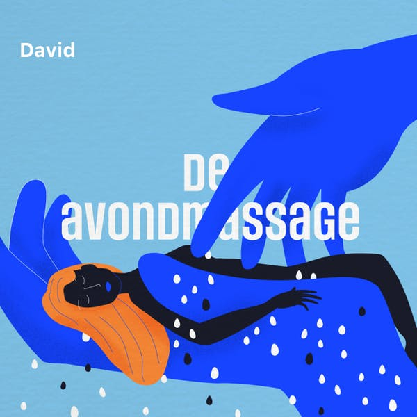 Cover art for: De avondmassage
