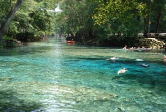 Southern Living: Why Travelers Are Flocking to Ginnie Springs, One of Florida's Most Beautiful Natural Wonders