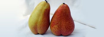 benefits of sleeping naked - image of pears in bed