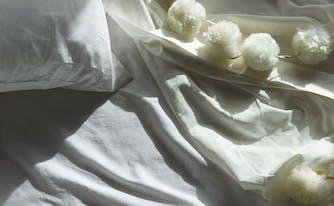 softest sheets - image of saatva organic cotton sheets