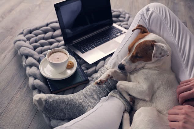 person snuggling with dog with coffee cup, laptop, and blanket nearby