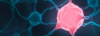 image of nerve pain signal