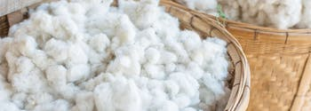 image of cotton in basket - mattress certifcations