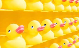 image of rubber duckies - baths and sleep