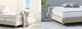 saatva latex hybrid mattress and zenhaven mattress