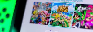 animal crossing video game selected on nintendo switch