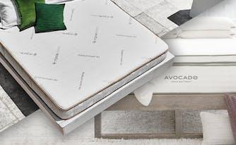 zenhaven vs avocado mattress