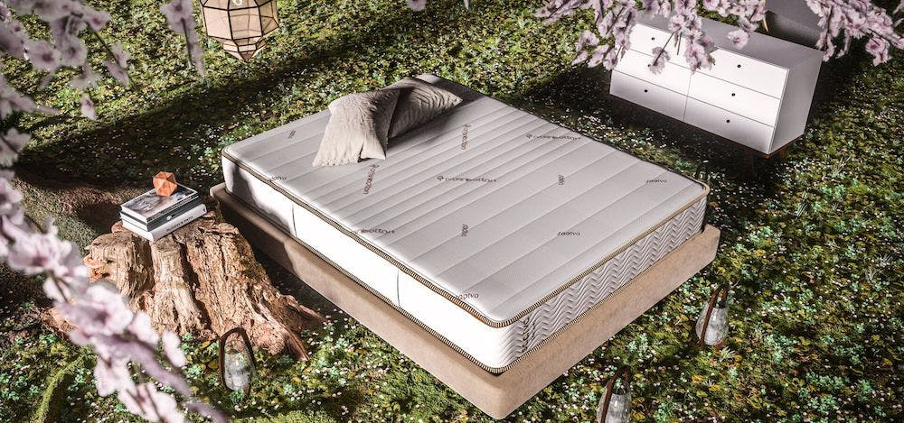 zenhaven latex mattress