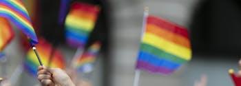 people holding lgbtq rainbow flags