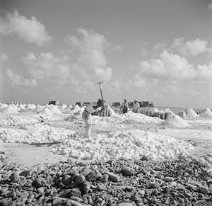 Salt production Bonaire 3 - Wikipedia