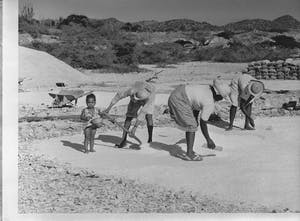 Salt production Bonaire - Wikipedia