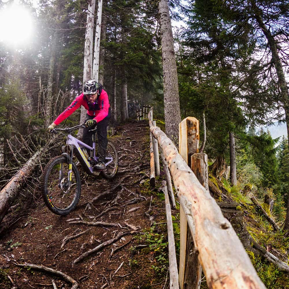 Steve Peat riding in woods