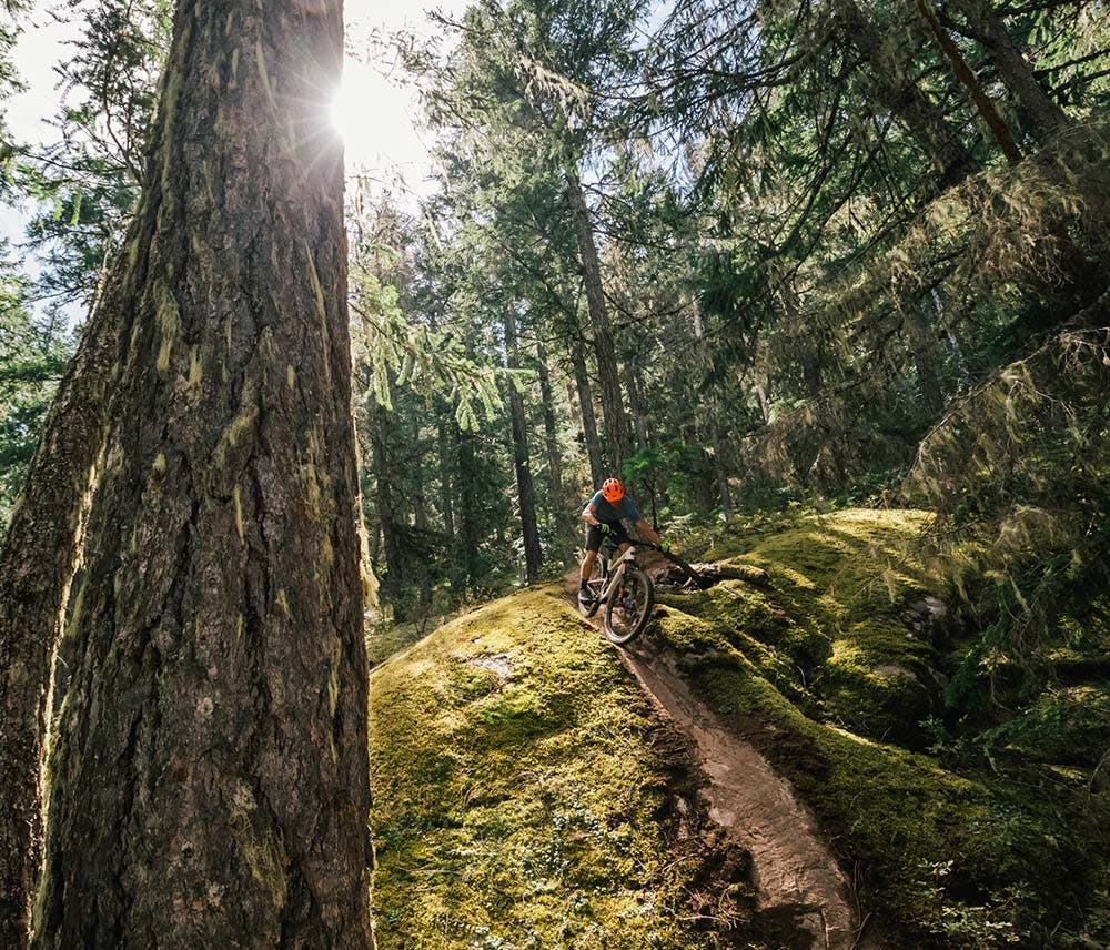 Mountain biker riding Tallboy in the woods