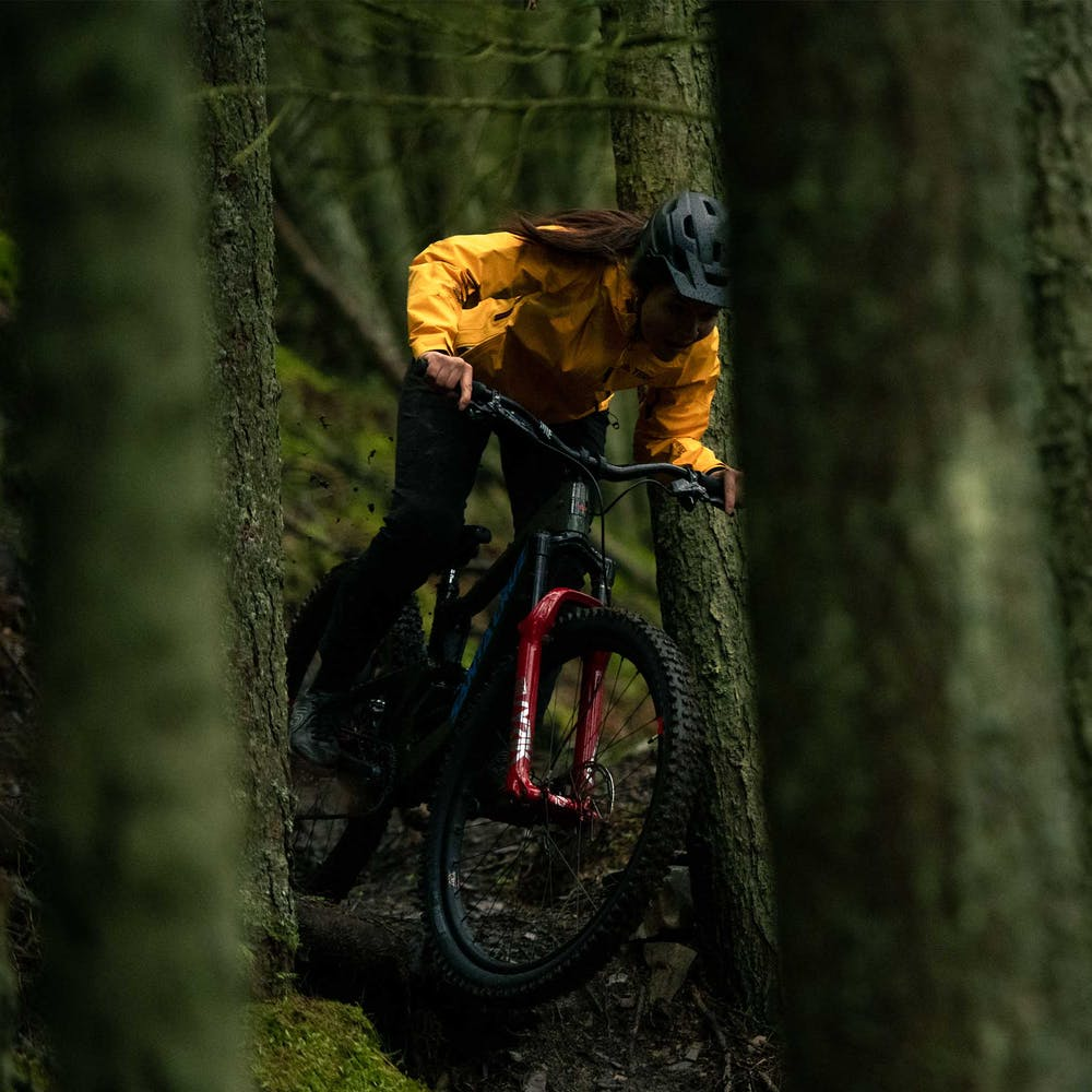 Riding the Bronson in the forest