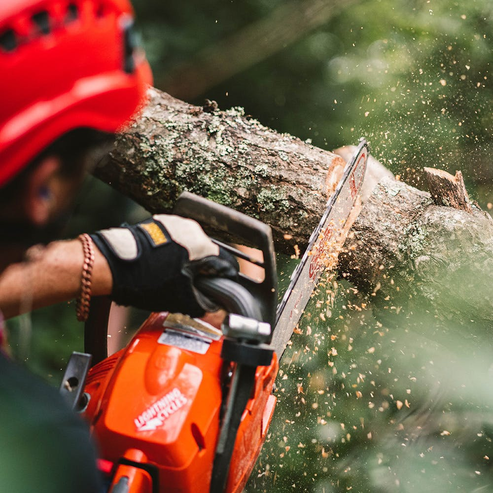 MWMC Trail Building with the Northwest North Carolina Mountain Bike Alliance (The Alliance) - Clearing a trail obstacle with a chainsaw