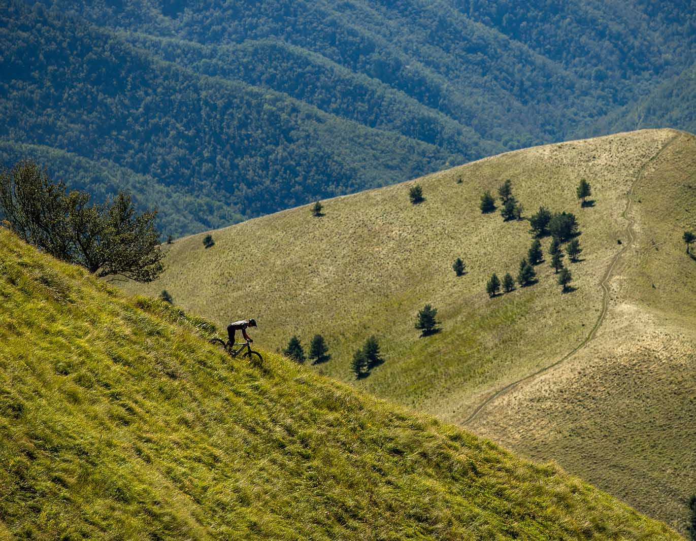 Mountain bike trail in the hills